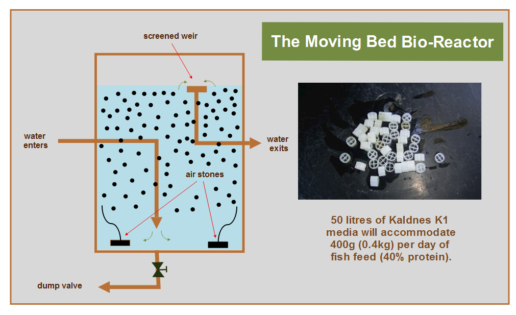 Moving+Bed+Bio-Reactor