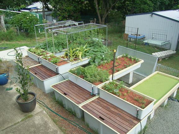 New System - 29 Dec 08 003 (Small)
